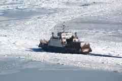 Фото: PRIMPRESS   Несколько человек дрейфуют на льдине во Владивостоке – МЧС