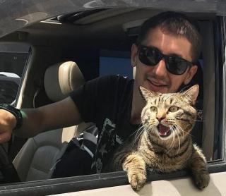 Фото: скриншот mikhail_galin | Летевшего во Владивосток кота Виктора в декабре ждет радостное событие