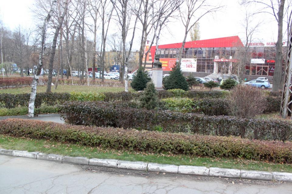 Деревья-сорняки и цветочные клумбы: что украшает Владивосток летом и безобразит зимой?