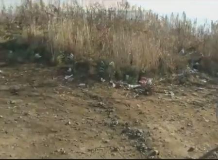 Житель Владивостока пристыдил горожан за обилие мусора