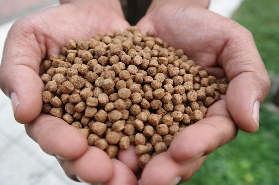 Более 12 тонн опасных кормов для животных арестовали в Приморье