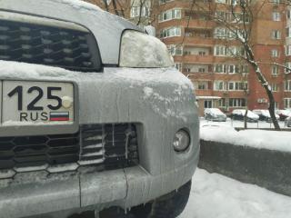 Фото: PRIMPRESS | «Чертов гений»: приморец показал, как защитить авто от падения предметов с высоты