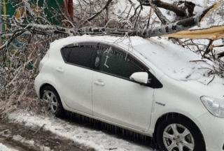 Фото: dpskontrol125rus | Что делать, если на ваше авто упало дерево, ЛЭП или сосулька (инструкция)