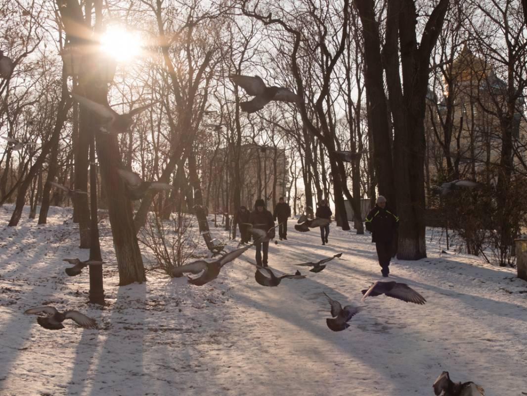 Во Владивосток пришла зима