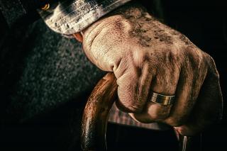 Фото: pixabay.com   Пять ошибок в трудовой книжке, за которые могут снизить пенсию