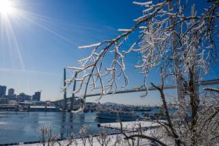 В Приморье ожидается потепление