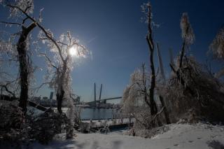Озвучен прогноз погоды на ближайшие выходные в Приморье