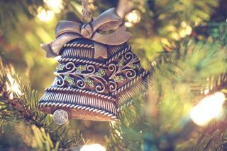 Фото: pixabay.com   «Какая зима, такие и елки»: фото из Приморья обсуждают в Сети