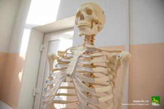 Фото: Анастасия Котлярова/vlc.ru | Интерактивный анатомический стол, роботы, микроскопы, макеты органов человека: во Владивостоке откроется новый медицинский класс