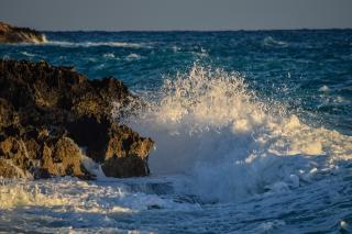 Фото: pixabay.com   «Каждый сходит с ума по-своему»: видео с побережья Приморья обсуждают в Сети