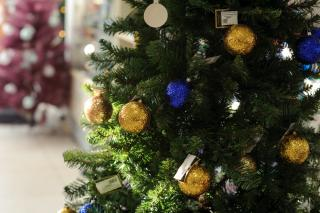 Фото: PRIMPRESS   МЧС дало рекомендации по безопасной установке новогодней елки