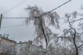 Фото: Татьяна Меель / PRIMPRESS   Топ-10 треш-событий 2020 года в Приморье