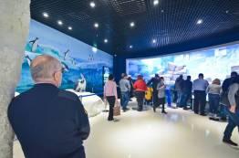 Фото:  | Приморский океанариум посетили пять тысяч человек