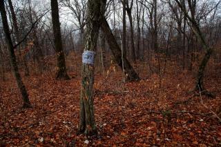 Фото: Михаил Васудева   «Не нужен он мне»: приморским многодетным семьям не нравится «рай в шалаше»