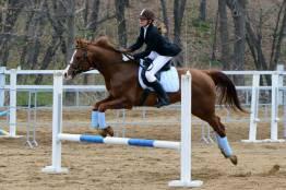 Фото: Евгений Кроликов  | Во Владивостоке прошли соревнования по конному спорту