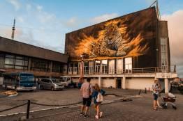 Фото: Артем Халупный | Неделя труда и 240 литров краски: гигантское граффити леопарда украсило Владивосток