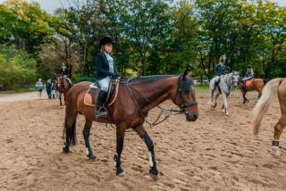 Фото: Артем Халупный | Во Владивостоке состоялось первенство города по конному спорту